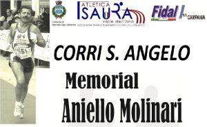 mercato-sanseverino-corri-s-angelo-2016